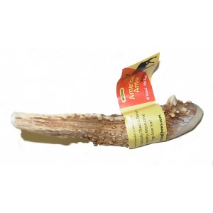 Medium Banded Antler Dog Chew